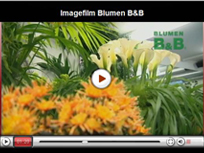 video-blumenbb